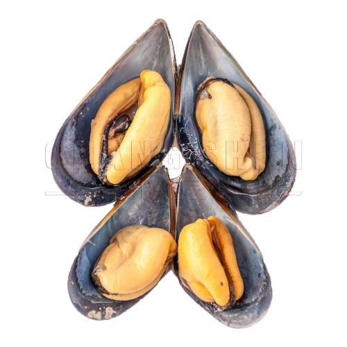 Half Shell Mussel 半壳蚝 907 Gram/pkt