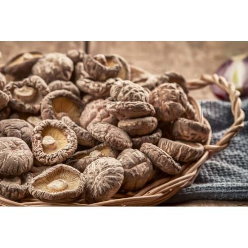 Dry Mushroom | 100 gm/pkt